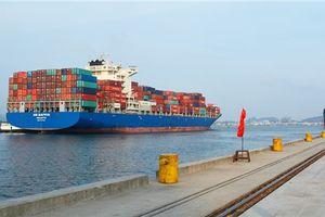 Nhân rộng việc phát hiện 3 container phế liệu, tình trạng ứ đọng tại các cảng biển sẽ khác