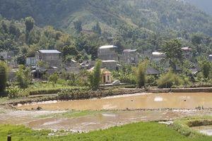 Thuận Châu - Sơn La: Mưa lũ cuốn trôi nhiều tài sản, 1 người chết