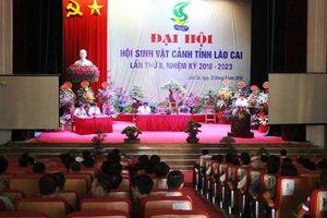 Lào Cai: Hội Sinh Vật Cảnh góp phần xây dựng 'Nông thôn mới - hồn quê Việt'