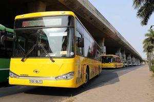 Sắp có xe buýt 'sang chảnh' từ sân bay về Vũng Tàu