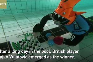 Độc đáo cuộc thi vừa lặn vừa đánh cờ vua