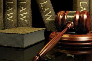 Hội thảo 'Góp ý hoàn thiện dự thảo Luật Thư viện' - khu vực miền Nam