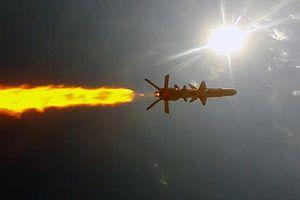 Ukraine bật mí tên lửa hành trình chống hạm Neptune