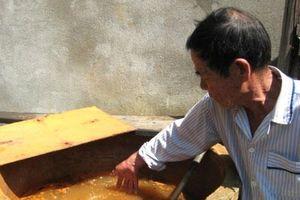 Lâm Đồng: Chuyển giao công nghệ xử lý nước nhiễm phèn cho người dân