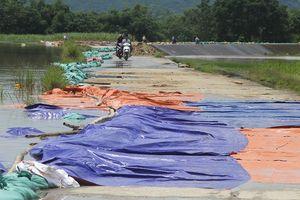 Nước tràn đê sông Bưởi, Thạch Thành di dời 1.574 hộ dân tránh lũ