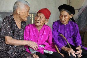 Chuyện về 3 chị em ruột được ví như '3 cây đại thụ' ở Nghệ An