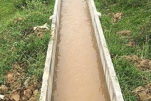 Dự án thủy lợi Bắc Nghệ An: Xóa bỏ các 'điểm nghẽn' về nước cho phát triển nông nghiệp