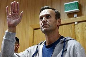 Alexei Navalny - 'đối thủ chính trị lớn nhất' của ông Putin?