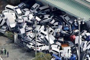 Nhật Bản: Siêu bão Jebi cướp đi sinh mạng của 11 người