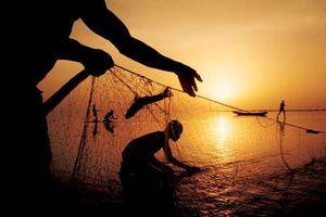 Bỏ ngỏ lao động ngư phủ