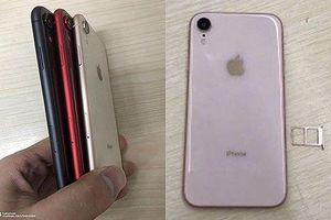 Tại sao Apple quyết định trang bị iPhone 2 sim?
