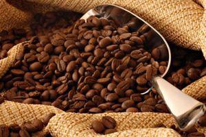 'Tìm đường' xuất khẩu cho cà phê chế biến thương hiệu Việt