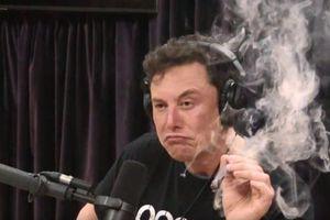 Tỷ phú Elon Musk hút cần sa khi đang phát trực tiếp trên mạng