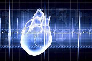 Vì sao con người ít bị ung thư tim?