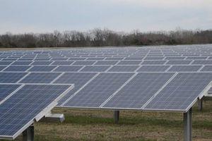 Trang trại điện mặt trời làm sa mạc Sahara mưa nhiều hơn