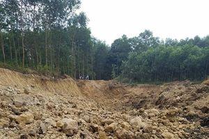 Huế: Phá tan cả khu rừng tràm, doanh nghiệp chở đất sét đi bán
