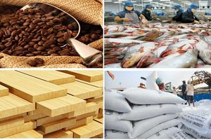 7 mặt hàng nông sản xuất khẩu mang về hàng tỷ USD cho Việt Nam