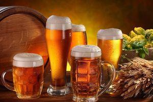 Bia Hà Nội – Hải Dương (HAD) chốt danh sách trả cổ tức 80% bằng tiền