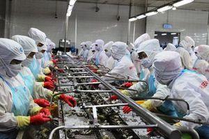 TIN MỚI: Mỹ bất ngờ giảm thuế chống bán phá giá cho tôm Việt Nam