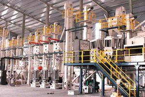 Tập đoàn SunRice của Úc đã mua lại nhà máy chế biến gạo của Việt Nam