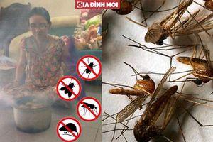 Chỉ cần thứ này trong nhà, ruồi muỗi côn trùng đều tránh xa