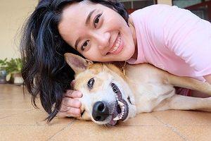 Ăn thịt chó, mèo là tội phạm hình sự ở một số nơi trên thế giới