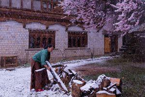 Vương quốc Bhutan - bản giao hưởng bốn mùa độc đáo
