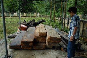 Khởi tố đối tượng chống người thi hành công vụ để tẩu tán gỗ lậu