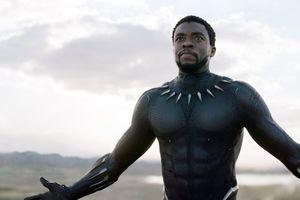 Vận động mạnh để 'Chiến binh báo đen' được đề cử Oscar