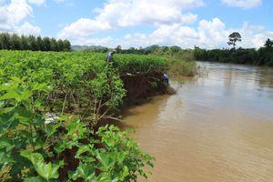 Tàu hút cát 'tái xuất', đất vườn lại trôi sông Đồng Nai