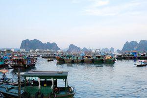 Quảng Ninh cấm biển vì ảnh hưởng của bão số 5