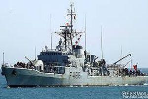 Tàu chiến 'về hưu' biến thành nhà cho sinh vật biển