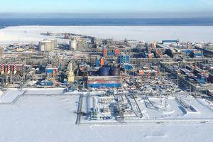 Novatek ký kết thỏa thuận hợp tác về LNG với JOGMEC của Nhật Bản