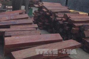 Phát hiện hơn 27m3 gỗ quý hiếm giấu trong các kiện phế liệu chuyển từ Lào về