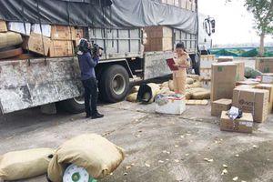 Thanh Hóa: Bắt giữ ô tô tải vận chuyển hơn 1.200 kg thịt đà điểu đông lạnh ôi thiu