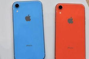 Chiêm ngưỡng Xr chiếc iPhone giá rẻ mới của Apple