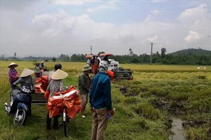 Đang làm rõ thông tin giang hồ bảo kê máy gặt tại Hà Tĩnh