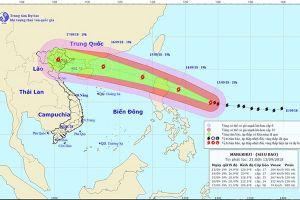 Cập nhật mới nhất về hướng di chuyển của siêu bão Mangkhut ngày 14.9