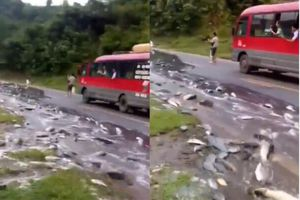 Xe tải lật giữa đường, hàng tấn cá chảy như suối trên quốc lộ