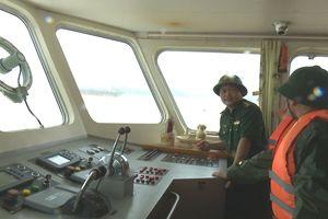 Tổ chức cứu hộ tàu cá và 17 thuyền viên gặp nạn trên biển