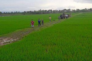 Đi gặt lúa, hai người bị sét đánh thương vong