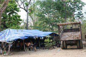 Vụ bắt trùm gỗ lậu Phượng 'râu': Kiểm điểm nhiều lãnh đạo Bộ đội biên phòng Đắk Lắk