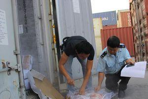 Lực lượng hải quan vào cuộc ngăn chặn nguy cơ bệnh Dịch tả lợn châu Phi vào Việt Nam