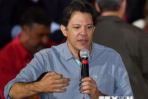 Ứng viên thay thế cựu Tổng thống Brazil Lula da Silva bắt đầu tăng tốc