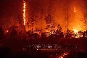 Mỹ: Bang Utah sơ tán bắt buộc hơn 5.000 dân vì cháy rừng