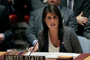 Đại sứ Mỹ cảnh báo Nga, Syria: 'Đừng thử thách chúng tôi'