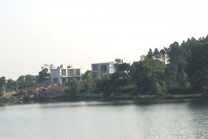 Sóc Sơn (Hà Nội): 'Biến' rừng phòng hộ thành homestay, biệt thự!?