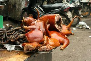 Giới trẻ Sài Gòn: Có nhiều loại thịt, sao lại ăn thịt chó?