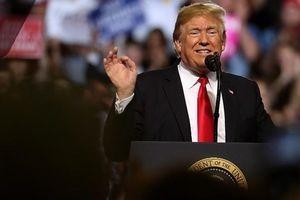 Mỹ cảnh báo Nga nếu can thiệp vào cuộc bầu cử giữa nhiệm kỳ tới