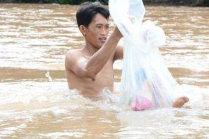 Học sinh qua suối bằng túi nilon, Chủ tịch tỉnh Điện Biên chỉ đạo xây cầu vượt suối Nậm Chim
